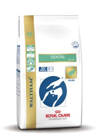 dental-royal-canin